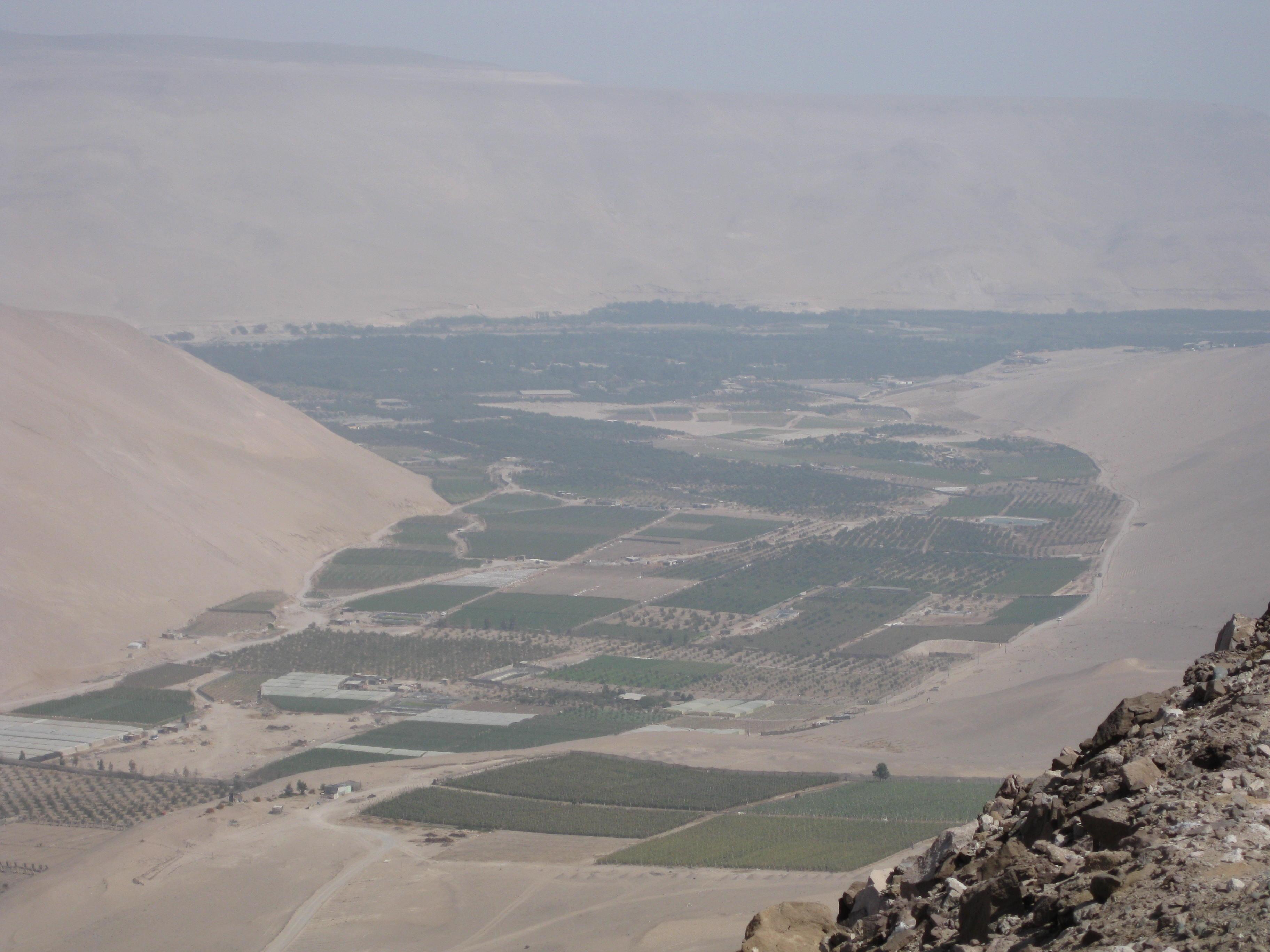 Azapa Valley and Atacama Dessert