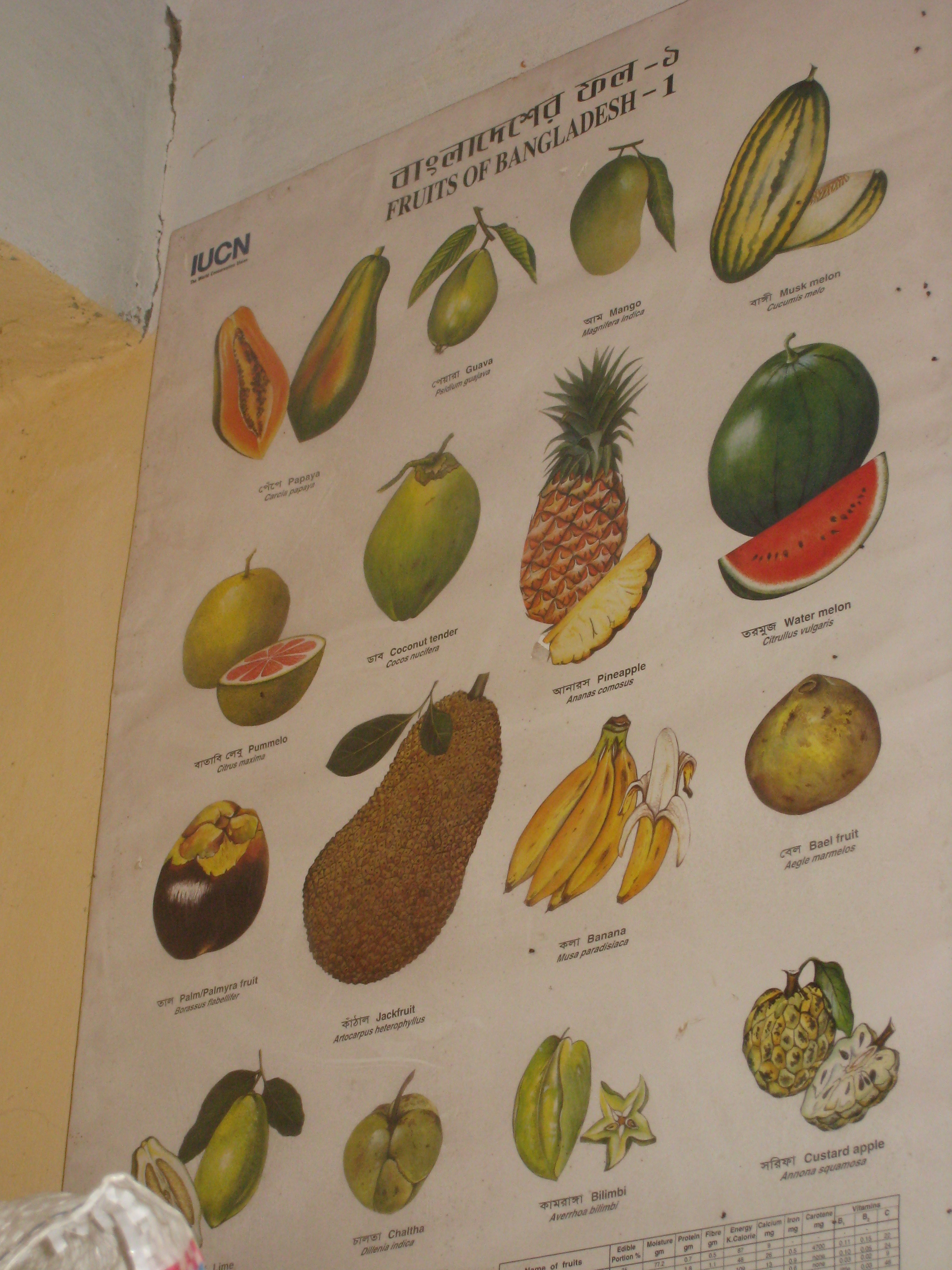 A sign of various fruits